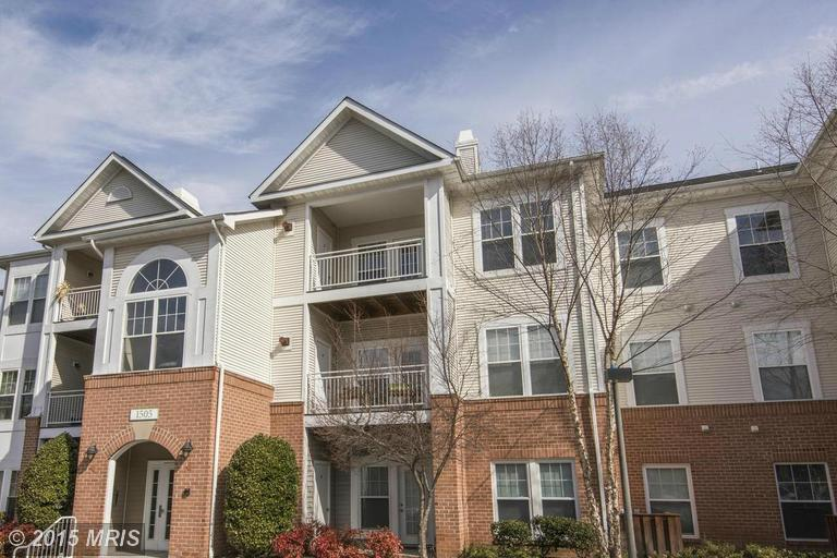 1505 North Point Dr #203