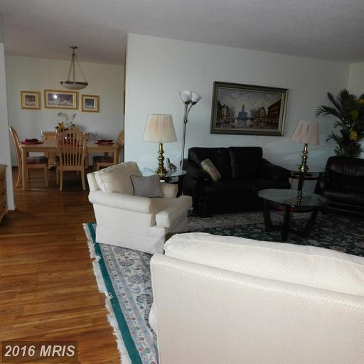 high-rise condos at 5901 Mount Eagle Dr #308, Alexandria 22303