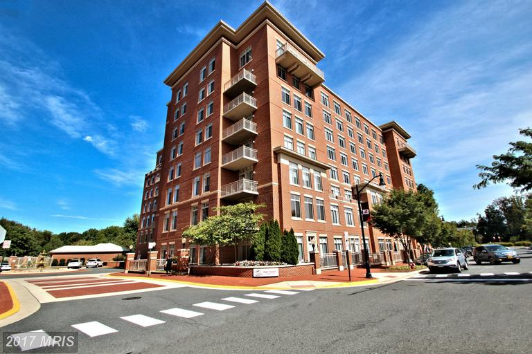 4480 Market Commons Dr #203