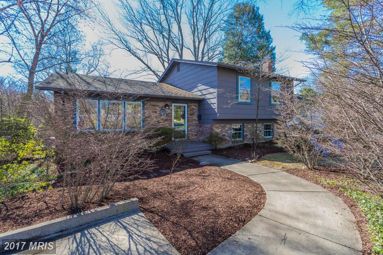 8230 Chancery Ct, Alexandria, VA 22308