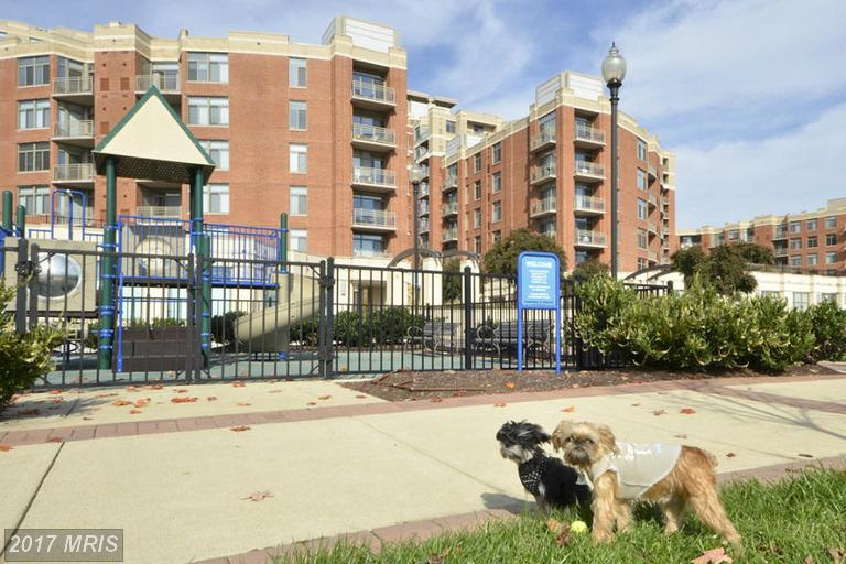 high-rise condos at 3650 Glebe Rd S #1045, Arlington 22202