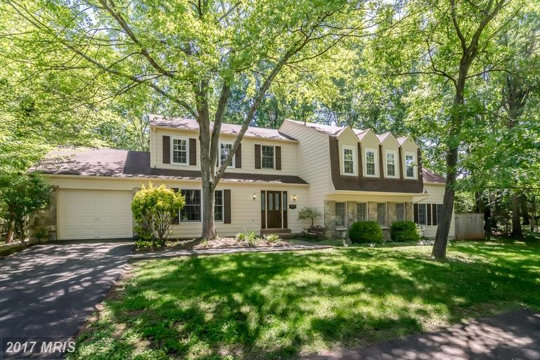 925 Cup Leaf Holly Ct