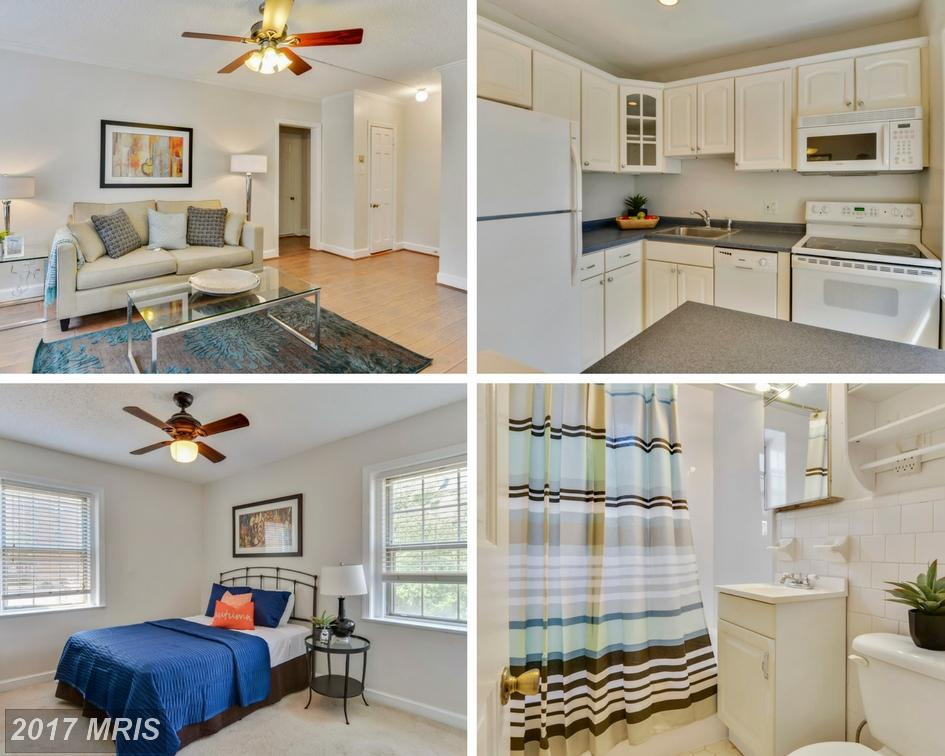 1 Bedroom Contemporary Advertised For $209,000 In Alexandria thumbnail