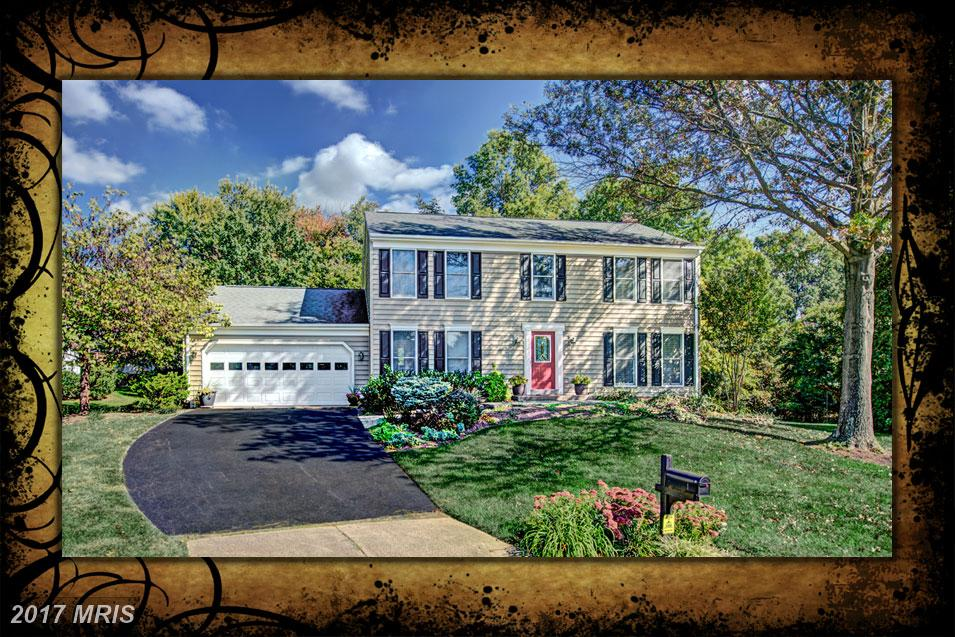 13149 Fern Hollow Ct