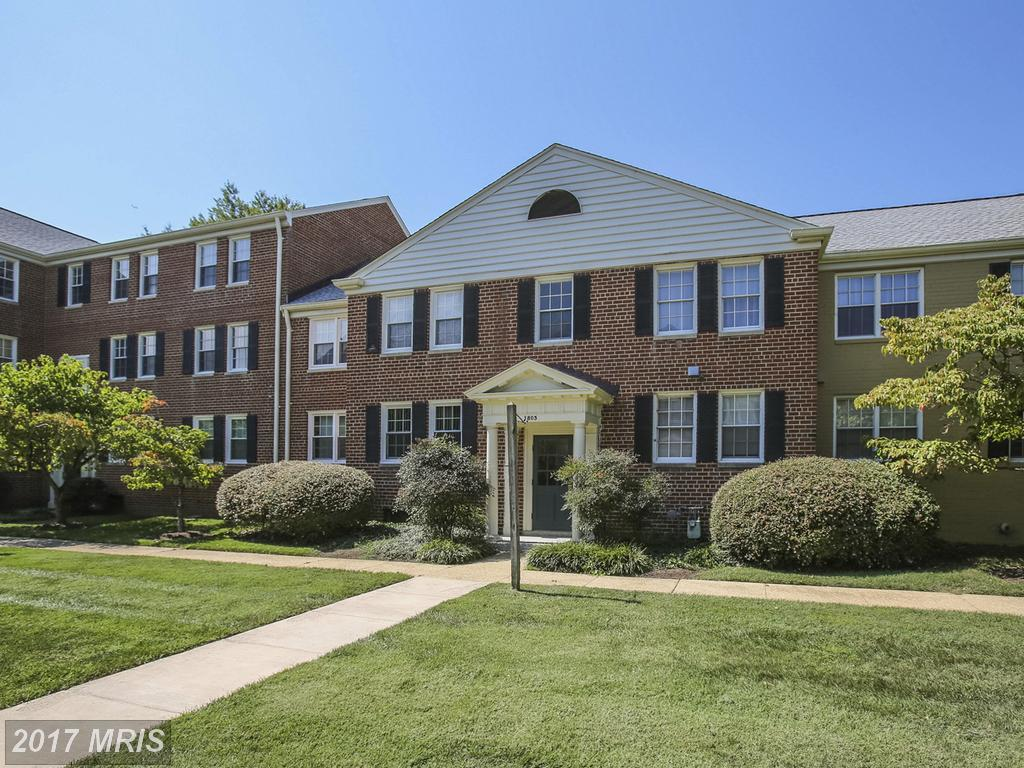 1 Beds // 1 Full Baths // $220,000 In Alexandria At Belle View thumbnail