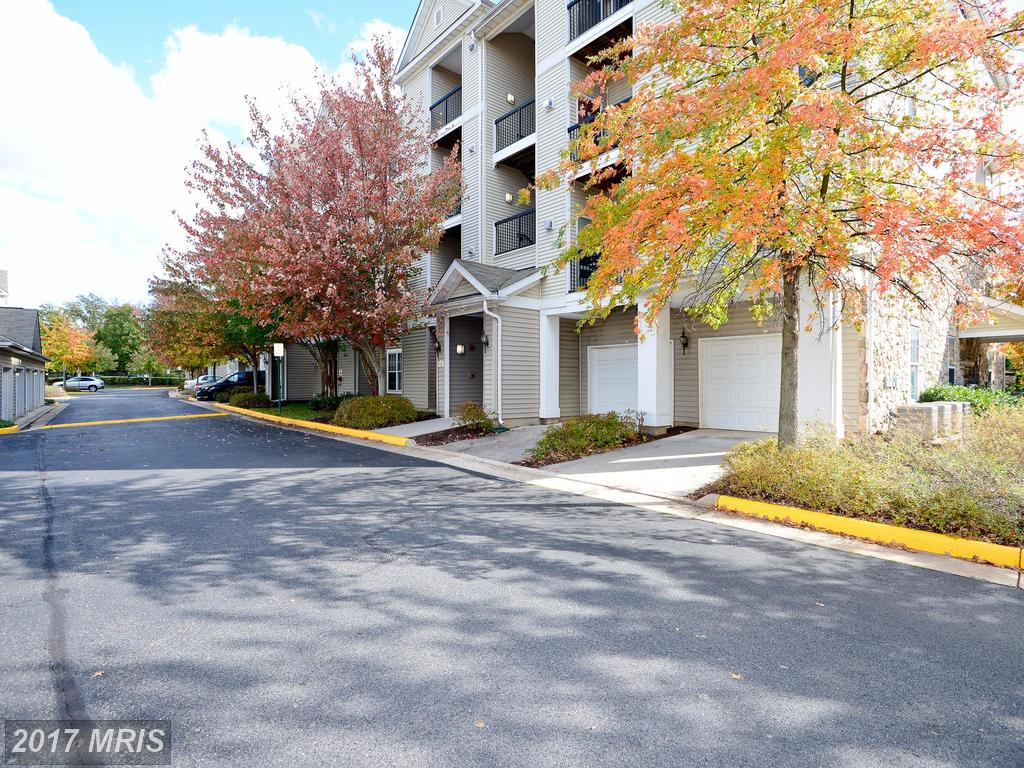 Are You Looking For No Less Than 716 Sqft Of Home In Centreville? thumbnail