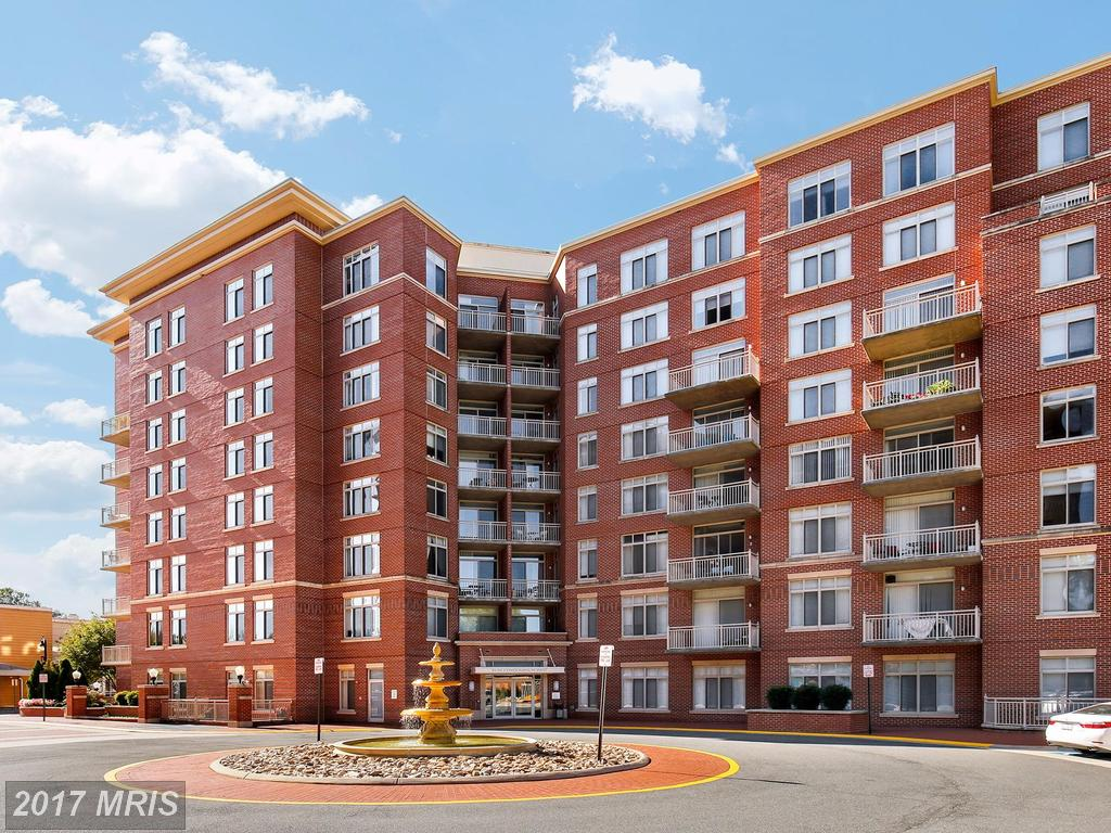 4490 Market Commons Dr #205, Fairfax, VA 22033