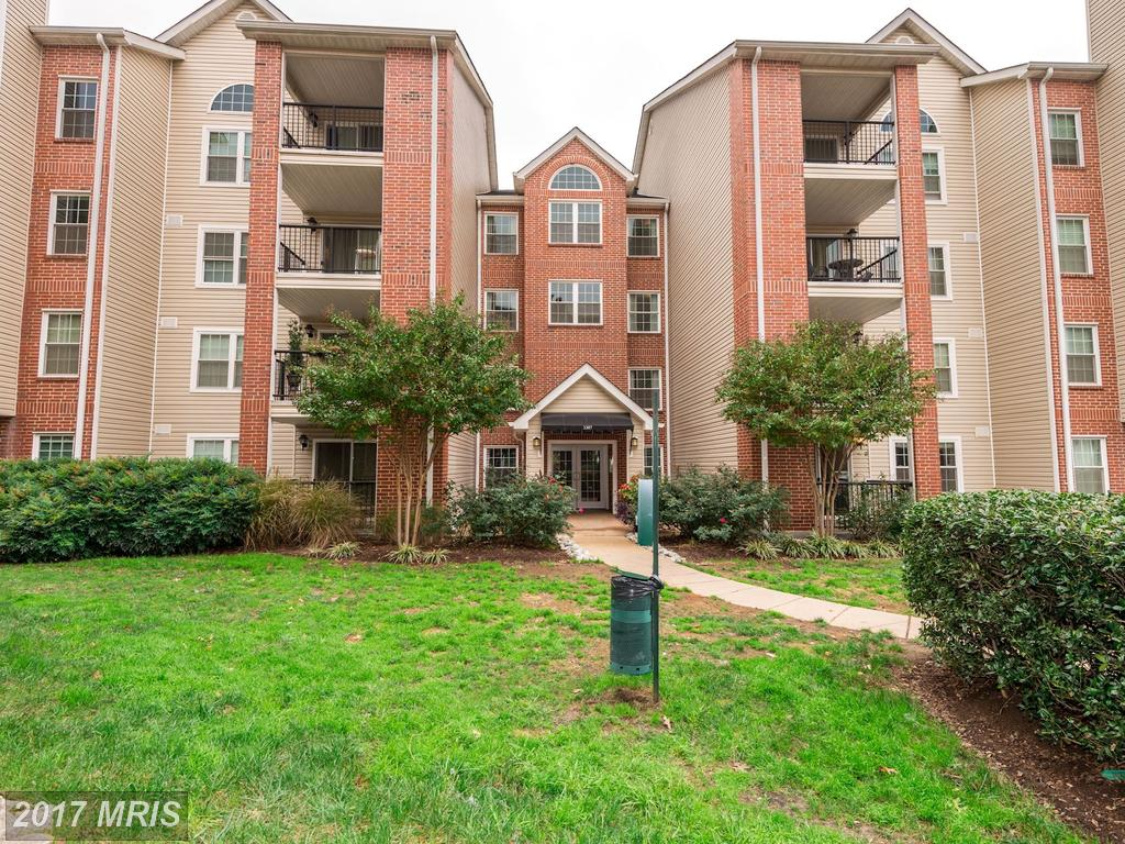 Shopping For Your Best Buy On A $199,000 Condo In Alexandria thumbnail