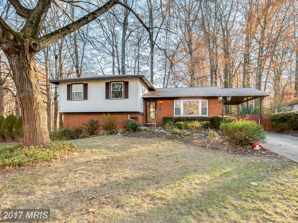 Will This Fairfax County House Be A Big Part Of Your Future? thumbnail