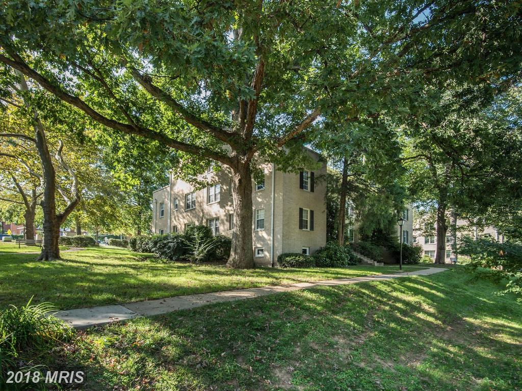 Photo of 820 Arlington Mill Dr #3-104