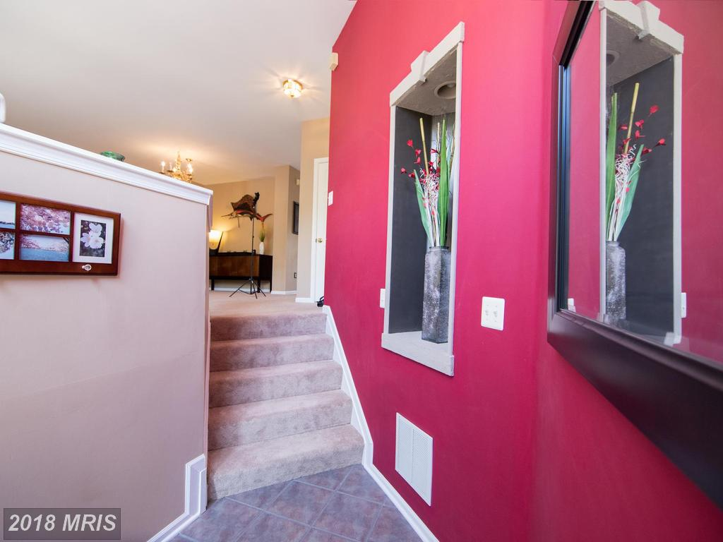 6655 Scottswood St, Alexandria, VA 22315