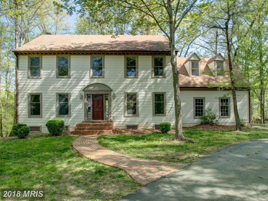 Will Nesbitt: Living And Playing In Burke, Virginia thumbnail