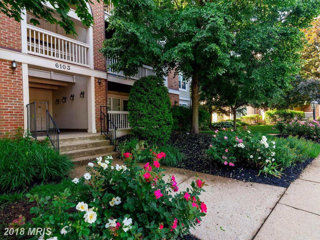 Modest Condo Listed For $305,000 In 22315 In Alexandria thumbnail