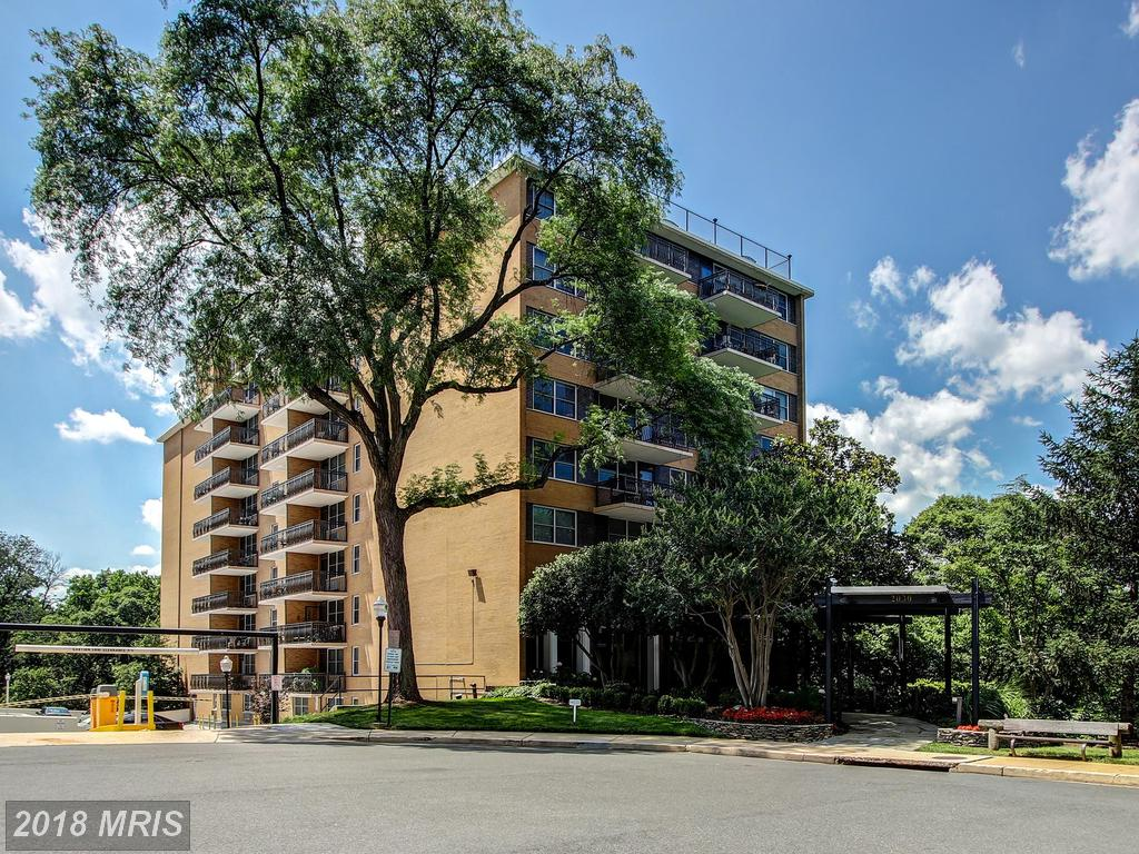 What Should You Expect If You're Doling Out $295,000 In 22201 In Arlington? thumbnail