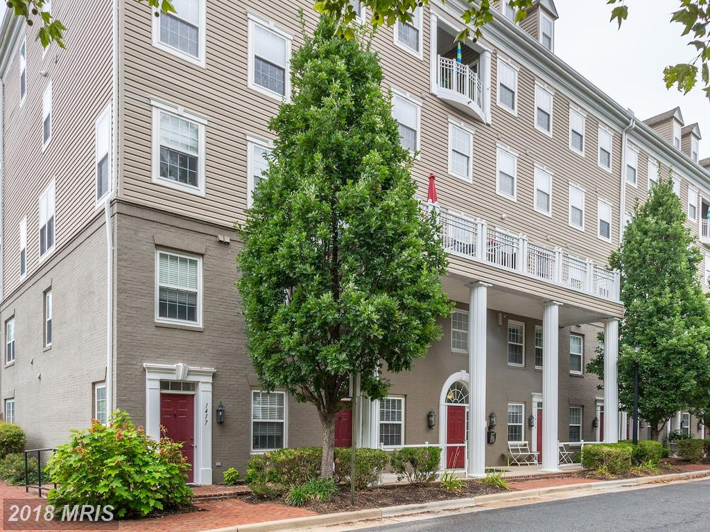 Find A Great Deal On A  Small 1-Bedroom Beside King Street Station In Alexandria, Virginia thumbnail