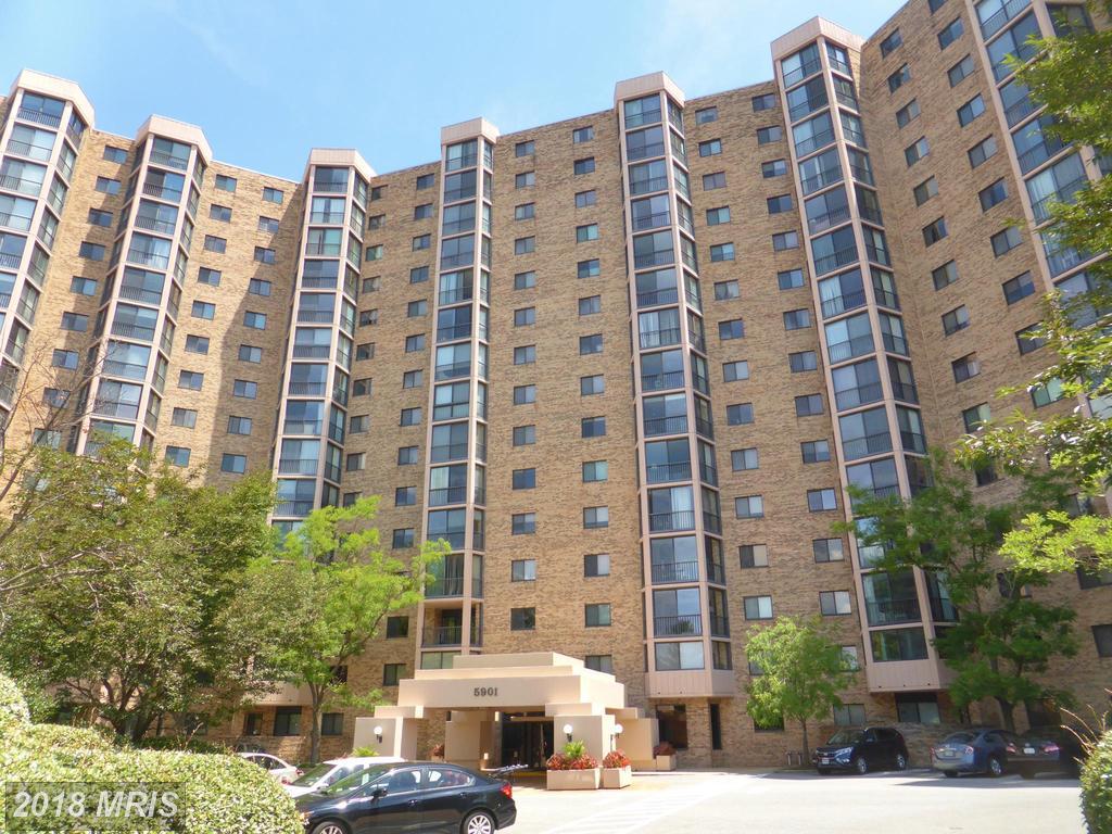 5901 Mount Eagle Dr #511, Alexandria, VA 22303