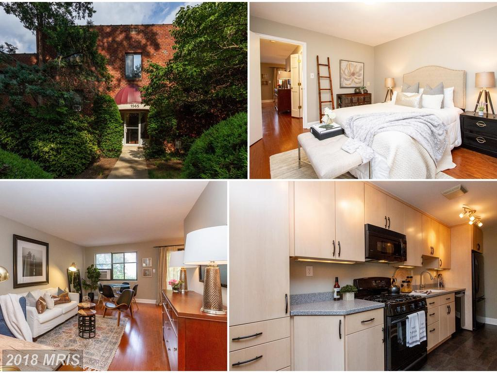 Mid 20th-Century Garden-Style Condo Listed For $325,000 In Arlington, Virginia thumbnail