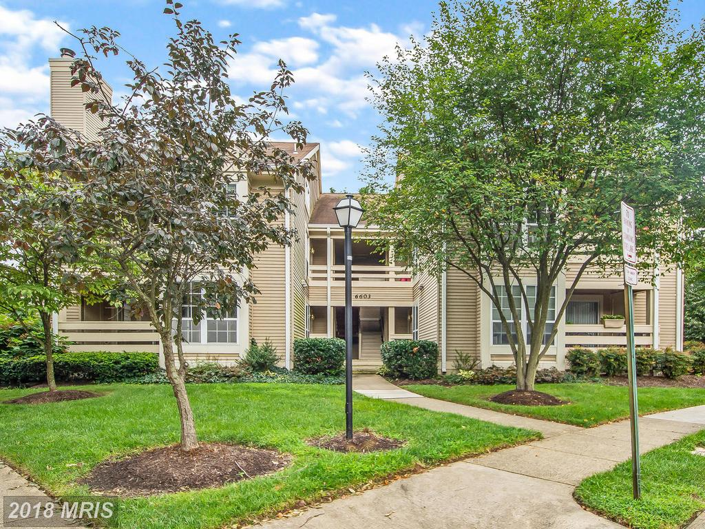 Affordable Condo In Northern Virginia thumbnail