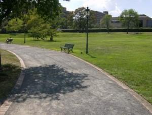 Oronoco Bay Park