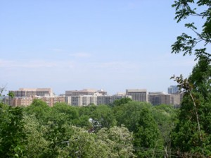 Crystal City as seen from Arlington Ridge