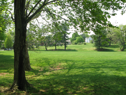 Quincy Park is an amenity of life in Arlington, Virginia