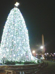 The National Christmas Tree and the Washington Monument