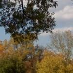 Nottoway Park