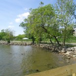 A peaceful day at Oronoco Bay Park