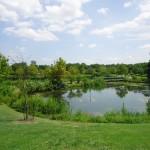 Lake at Ben Brenman