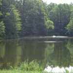 The Potomac River has several good fishing locations