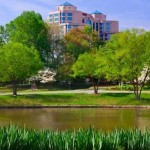 New Providence Village Condominiums- Easy Commuting In Falls Church
