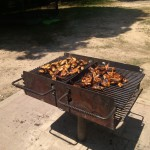 Tasty chicken being barbequed at Pohick Regional Park