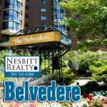 Belvedere real estate agents.
