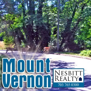 Mount Vernon real estate agents.