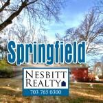 4 Overlooked Activities in Springfield Virginia