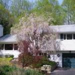 Remarkable low maintenance backyard certified Wildlife Sanctuary by Audubon