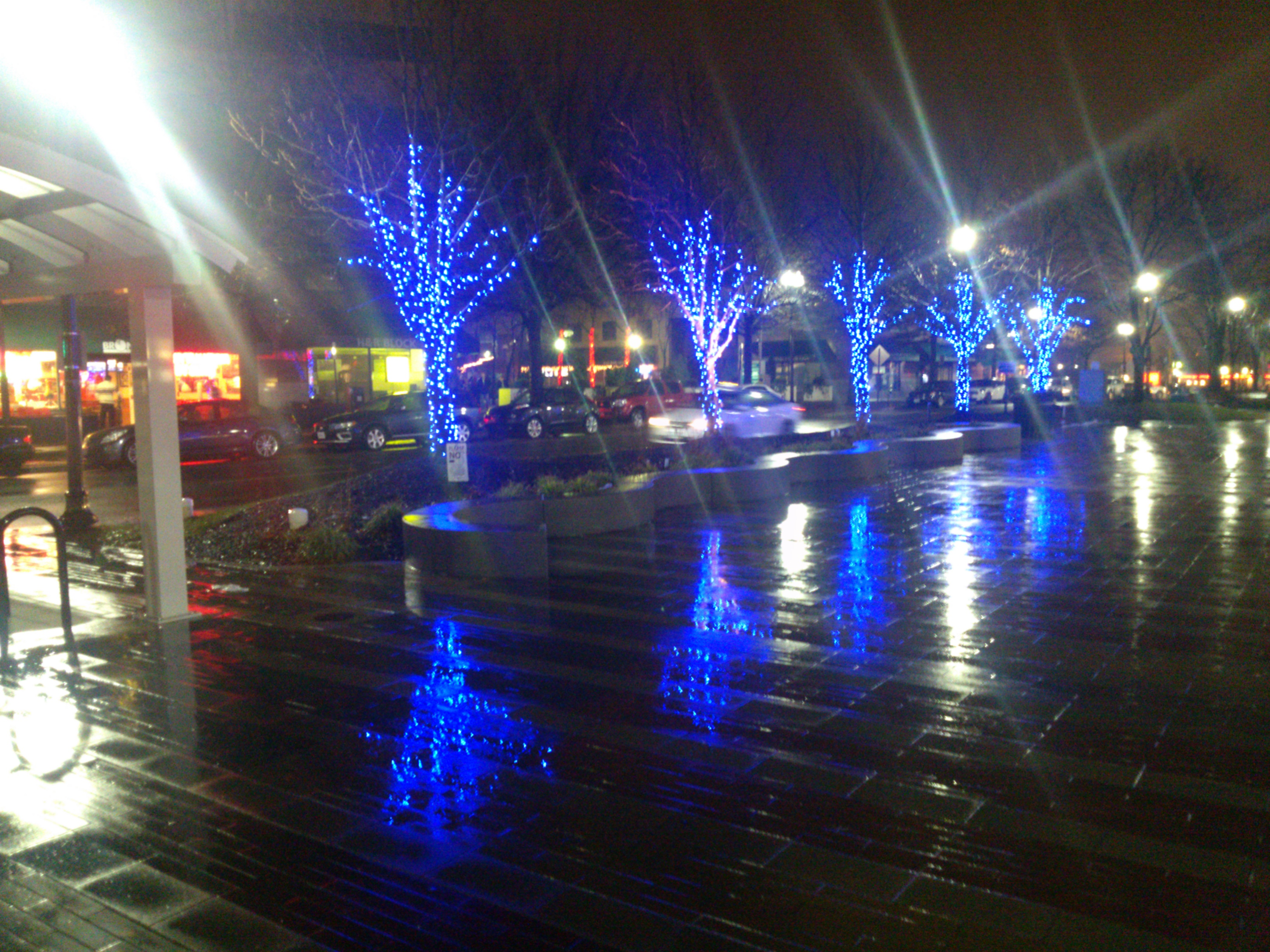 Christmas lights in Clarendon