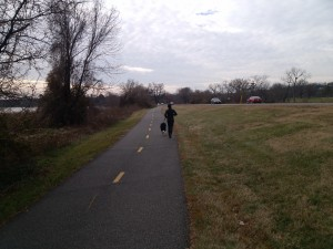 Along the Mount Vernon Trail a jogger and dog exercise