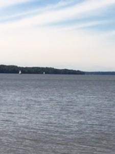 Path by Potomac