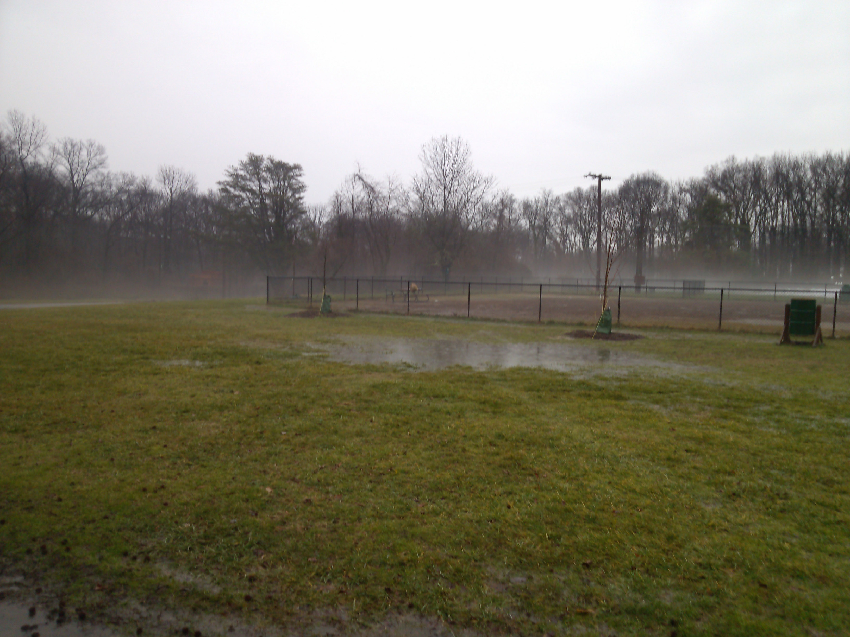 Puddles at West Grove Park