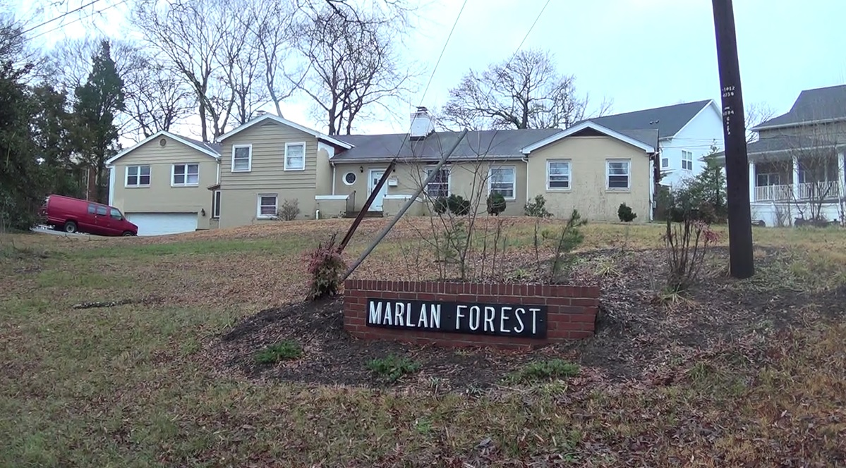 Marlan Forest